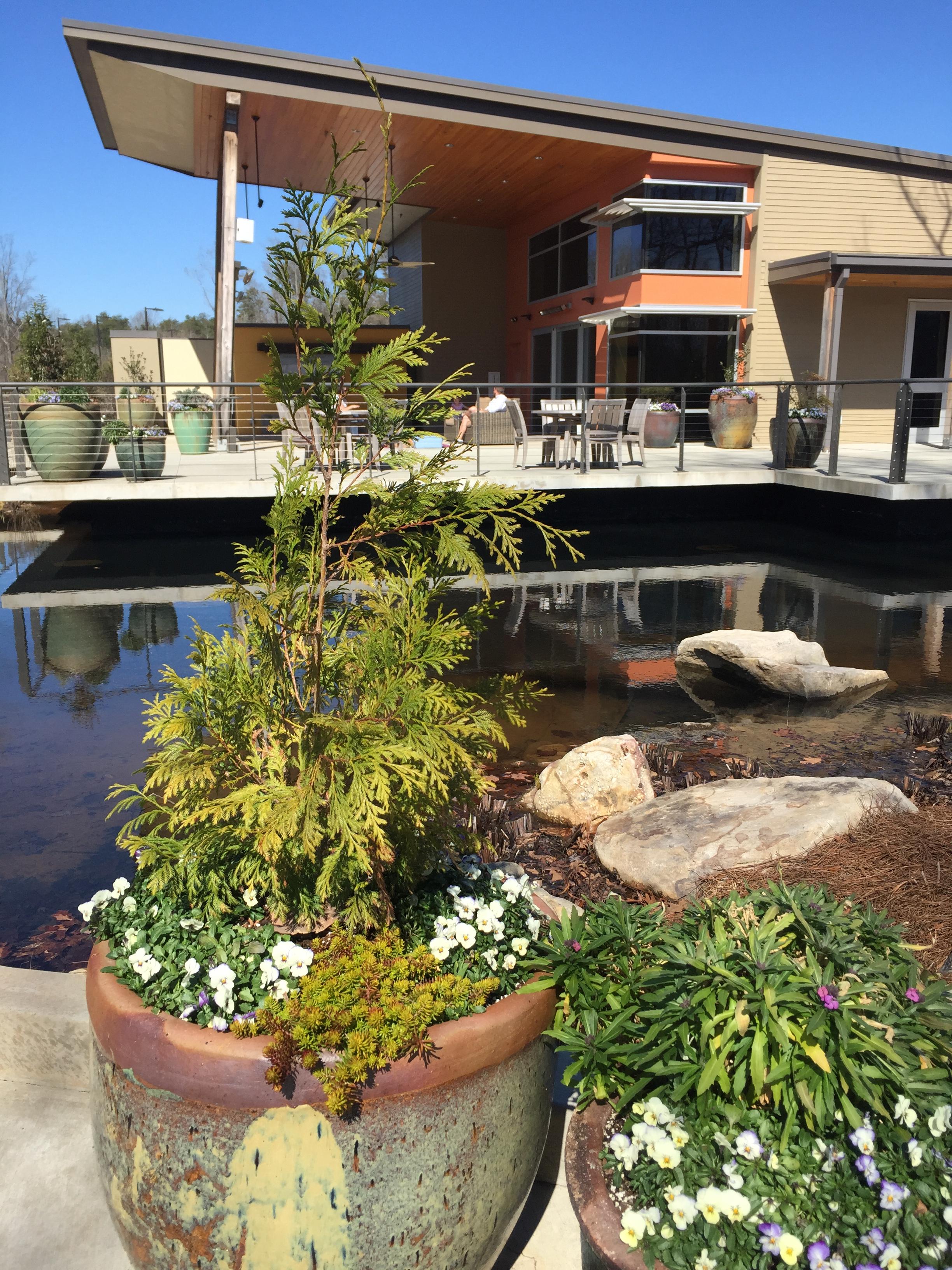 atlanta botanical gardens gainesville fall events - Gainesville Botanical Garden